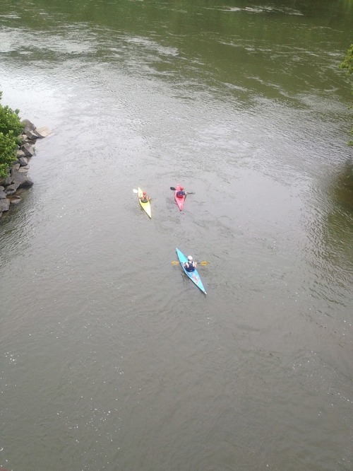 Red_white_and_blue_kayaks