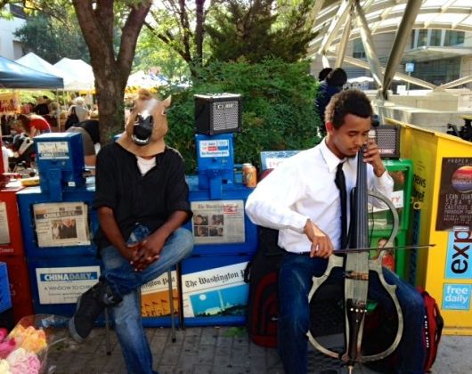 Cello and Horse