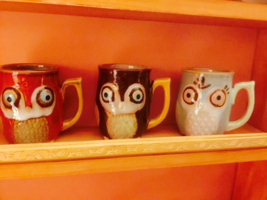 Owl Mugs.jpeg