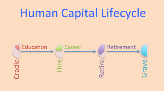 Human Capital Lifecycle.jpeg